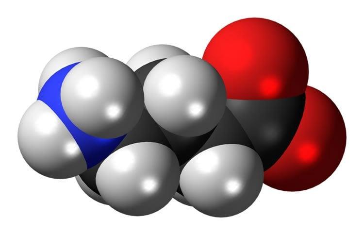 3D molecular model of GABA.