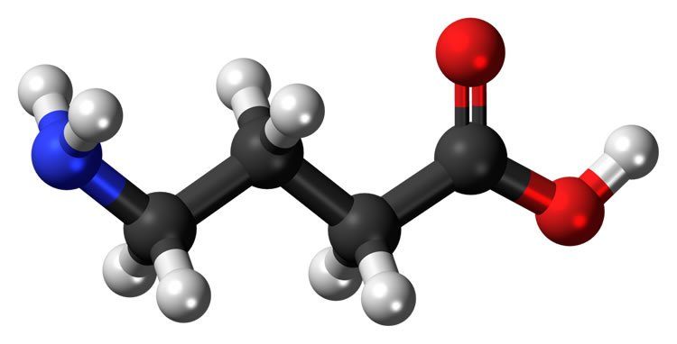 Image shows molecular structure of GABA.