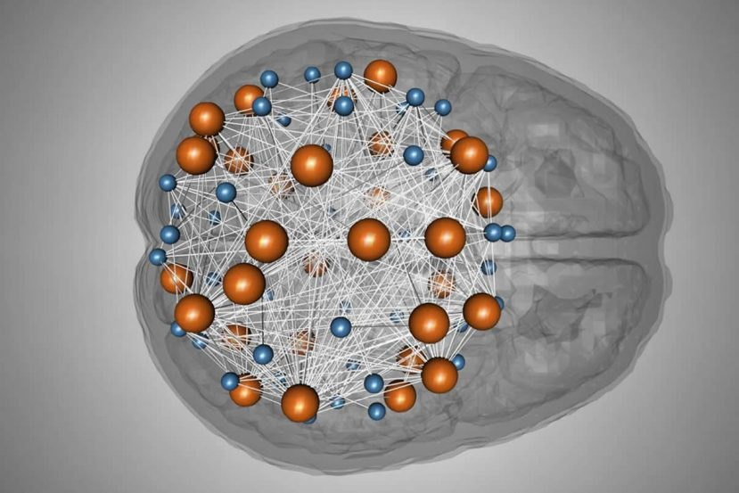Image shows a brain with dots and lines, as though in a network.