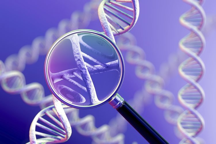 Image shows a DNA double helix and magnifying glass.