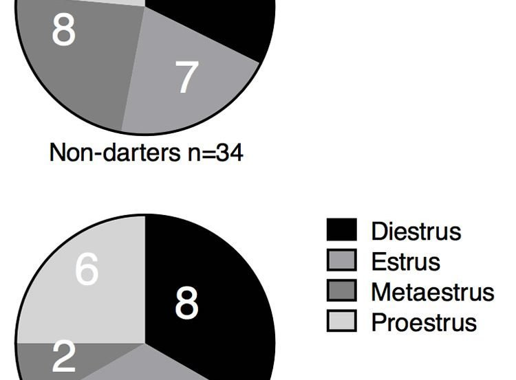 pie charts of darters v non darters.