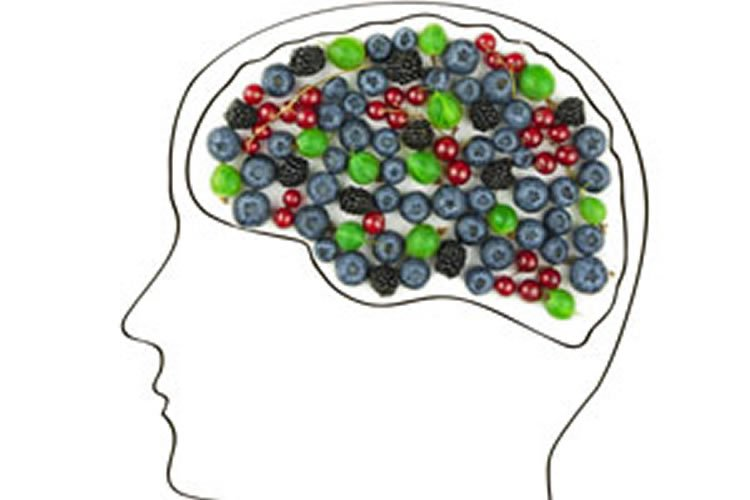 Image shows a head with fruits making up the brain.
