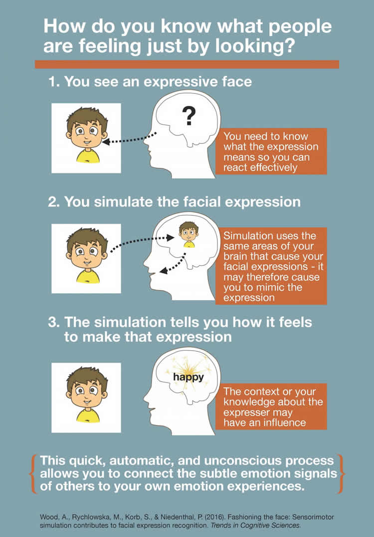 Infographic about smiling.