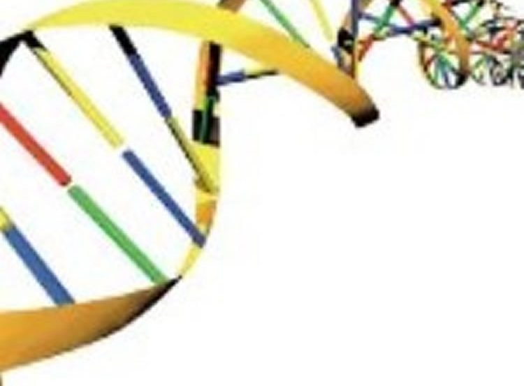 Image of a DNA double helix.