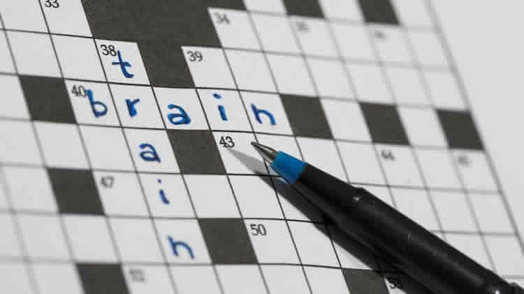 Image shows a crossword with the word brain written in.