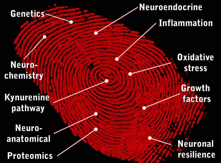 Image shows a red fingerprint.