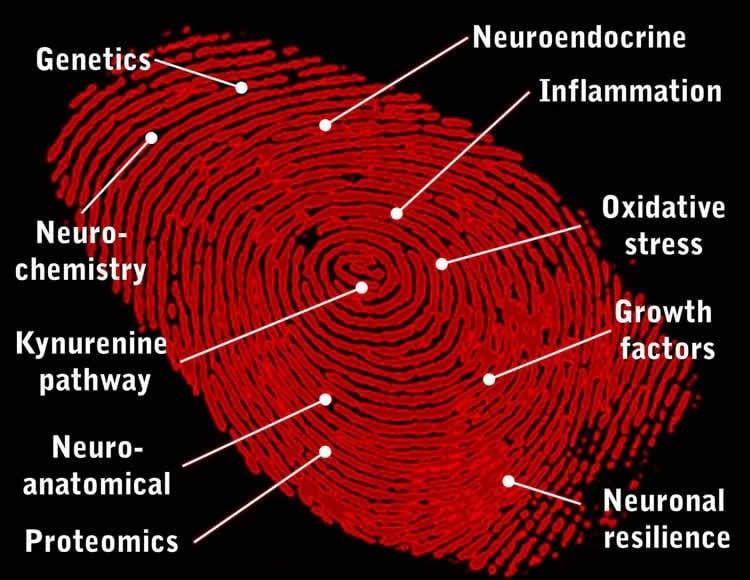 Image shows a red fingerprint.