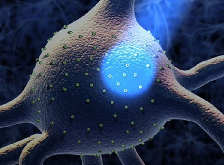 Image of a neuron with a light shining on it.