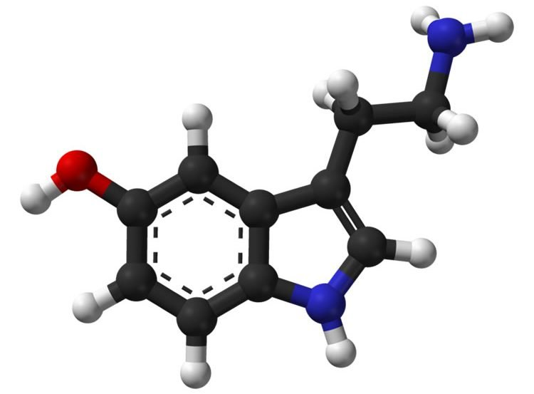 Image shows a ball-and-stick model of the serotonin molecule.