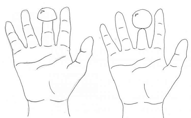 Diagram of the Shrunken Finger illusion.