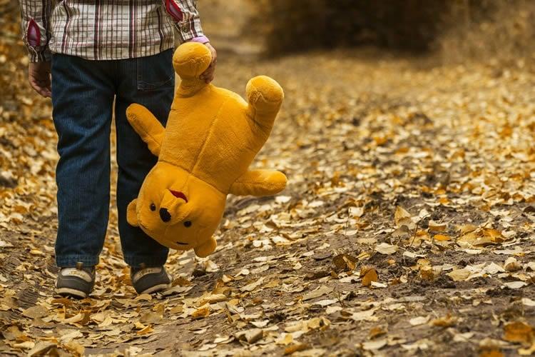 Image of a teddy bear.