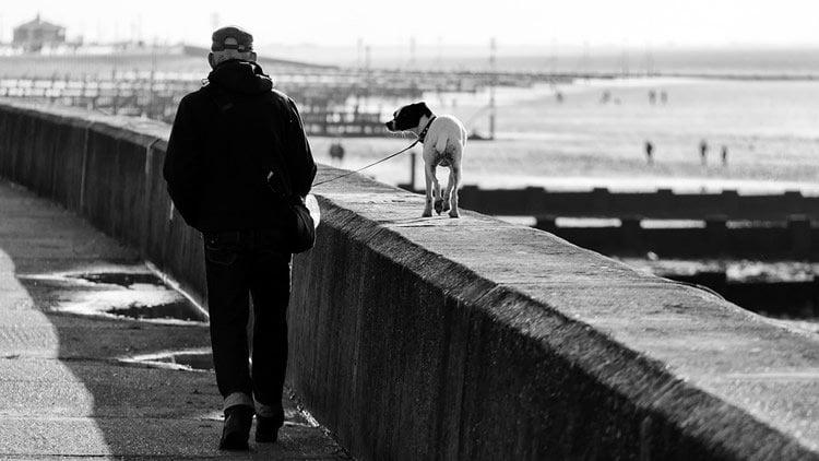 Image shows a man walking a dog along a beach wall.