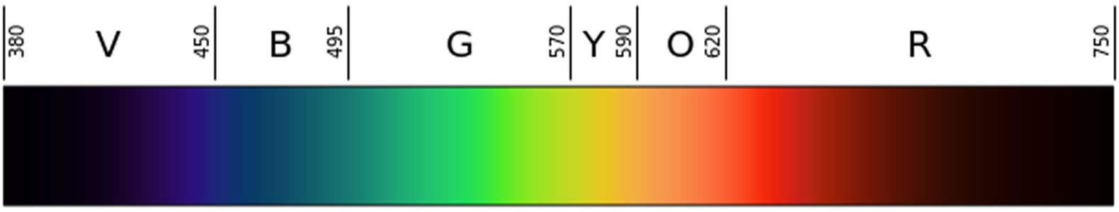 Image shows a linear representation of the visible light spectrum.