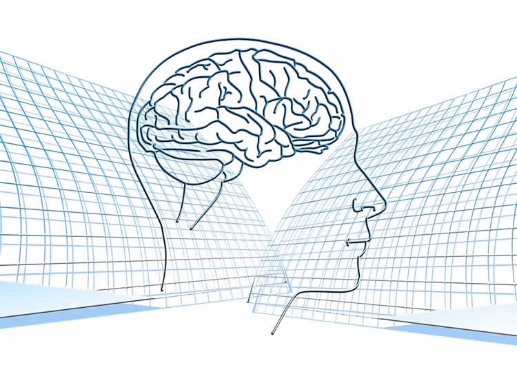 relationship between biopsychology and neuroscience Together the new science of biological psychology seeks to address and support the vital relationship between the body and the mind through the integral .