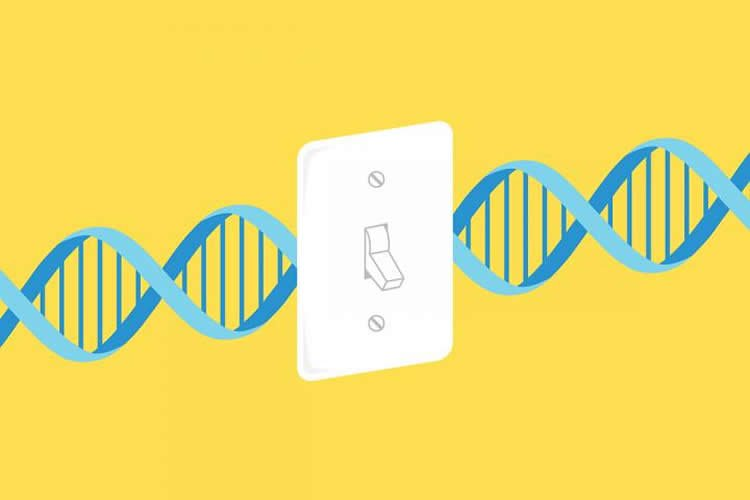 Image shows a light switch and DNA strand.
