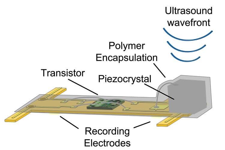 diagram of the sensor.