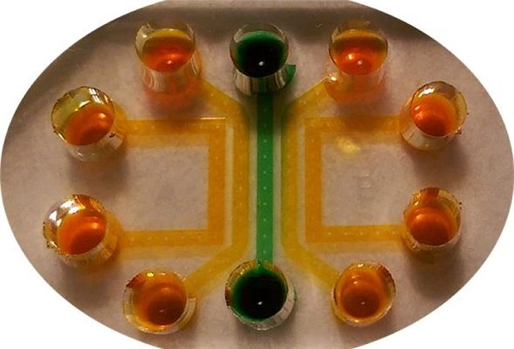 Image shows the microfluidic device.