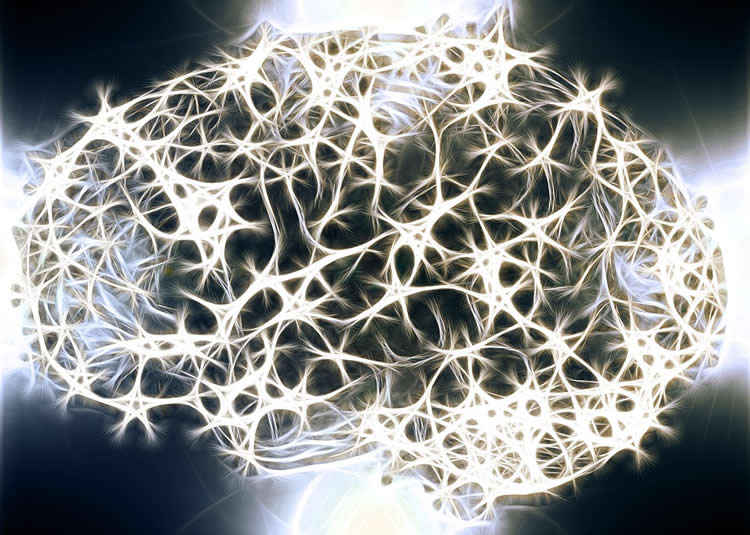 Image shows a depiction of a brain made up of white neurons.