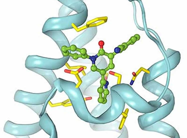 Image shows the binding site.