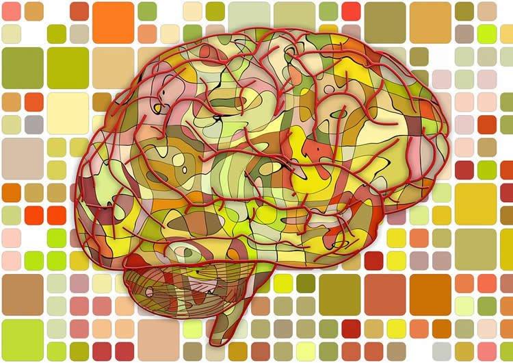 Image shows a brain mosaic.