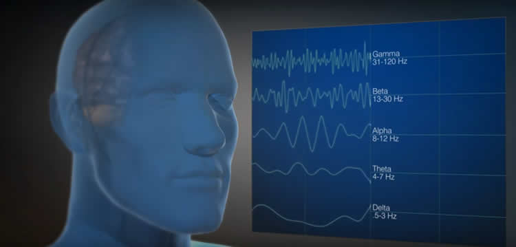 Image shows a head and brain waves.