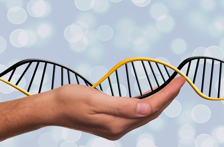 Image shows a hand holding a DNA strand.