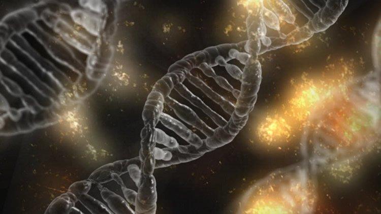 Image shows DNA strands.