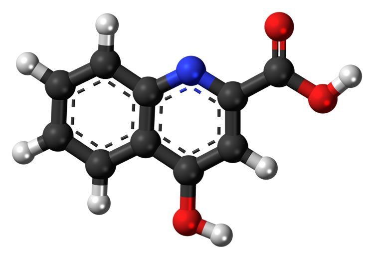 acetylsalicylic acid discovery 2018/08/18 acetylsalicylic acid by pharmetics inc: acetylsalicylic acid (asa) belongs to the group of medications called analgesics (pain relievers), antipyretics (fever reducers), anti-inflammatories (inflammation reducers), and.