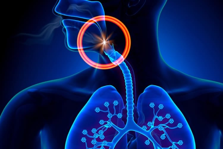 Image shows the outline of a person and their lungs in blue.