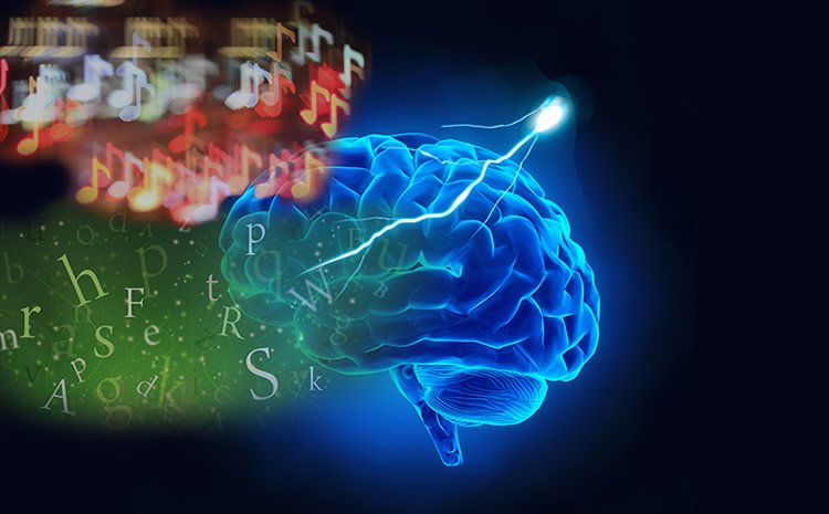Image shows a brain, letters and musical notes.