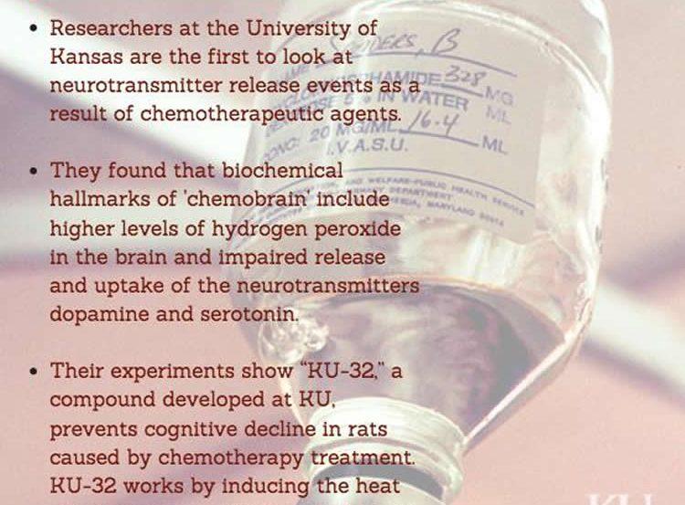 Image shows a chemo IV.