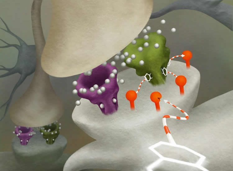 Image shows how the DART neuron drug delivery system works.