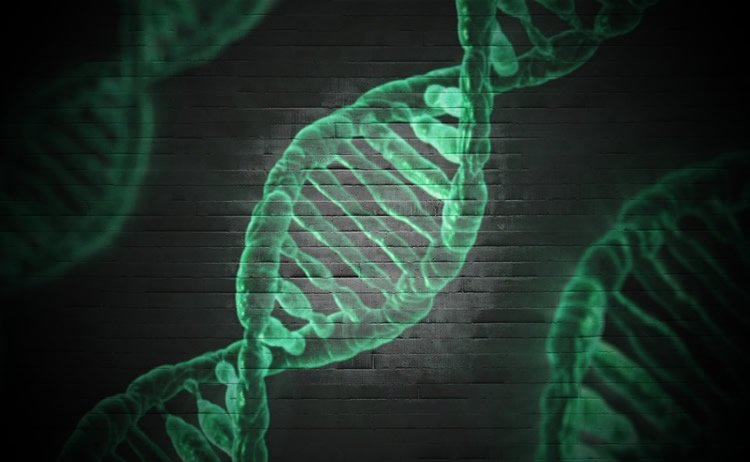 Image shows green DNA strands.