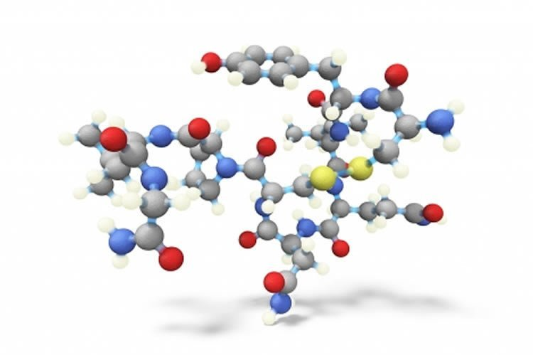 Image shows a stick and ball structure of oxytocin.