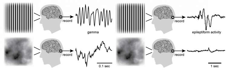 Image shows how some images cause seizures.