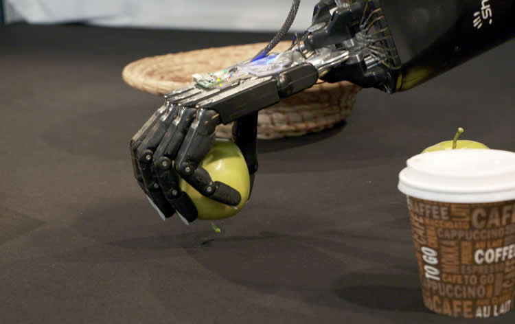 A robot hand is shown picking up an apple.