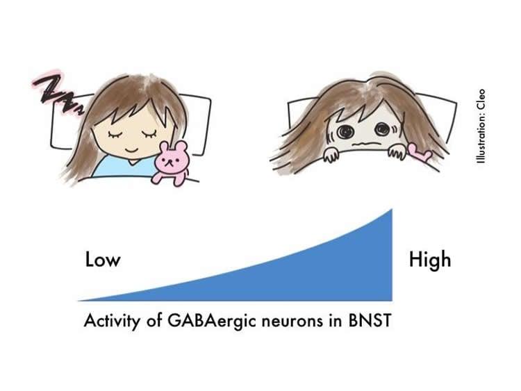 Image shows a cartoon of a woman sleeping.