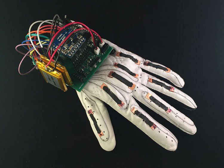 Image shows the glove.