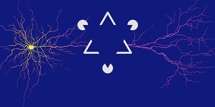 Image shows an optical illustion of a triangle and neurons.