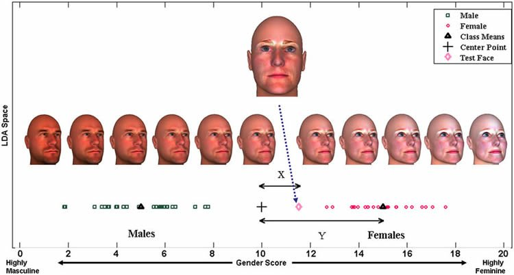Image shows 3D generated faces.