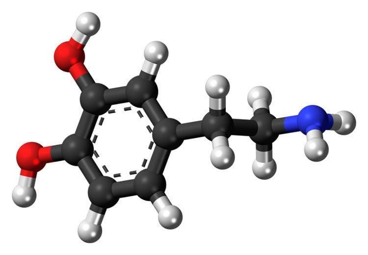 Image shows a dopamine molecule.