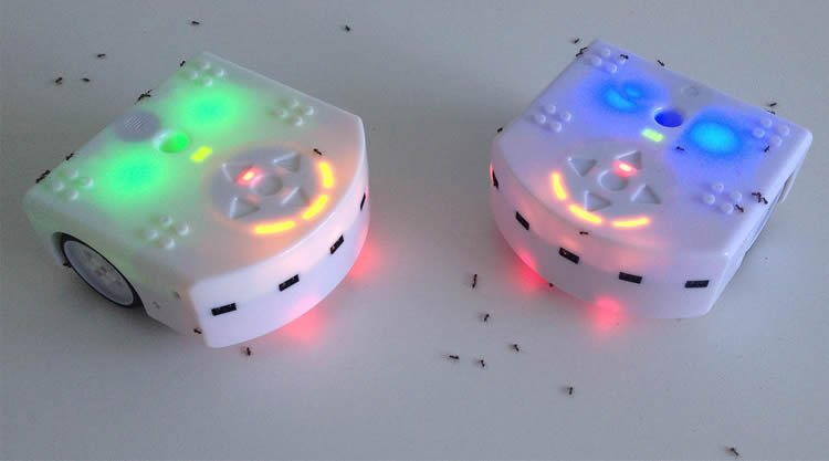 Robotic Bugs Train Insects to Be Helpers