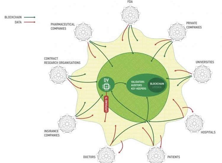 Image shows a diagram.