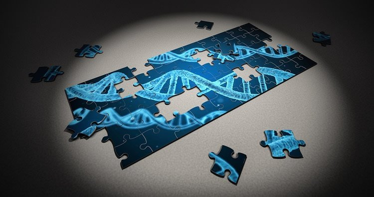 Image shows a jigsaw puzzle of a dna strand.