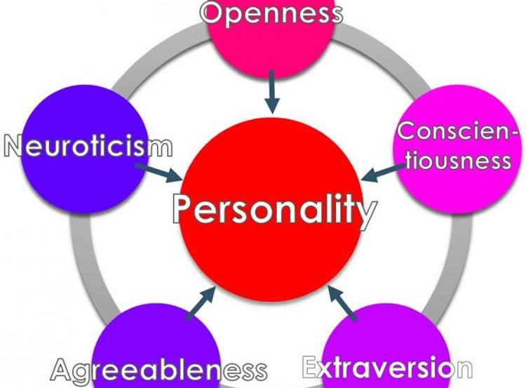 Image shows a personality trait wheel.
