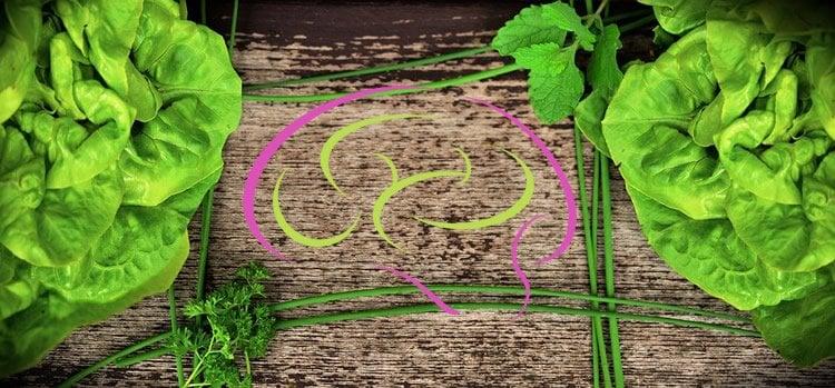 leafy veggies and a brain