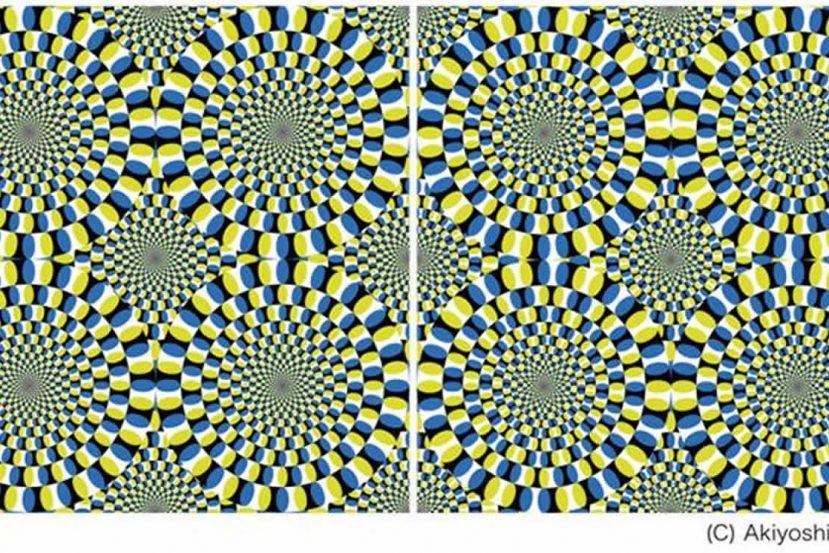 snake illusion