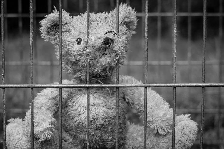 a teddy bear behind bars