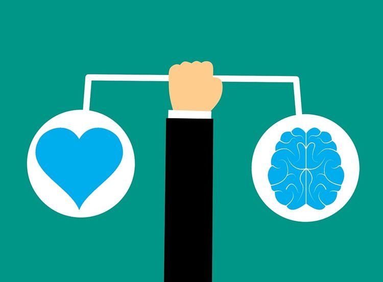 a heart and a brain