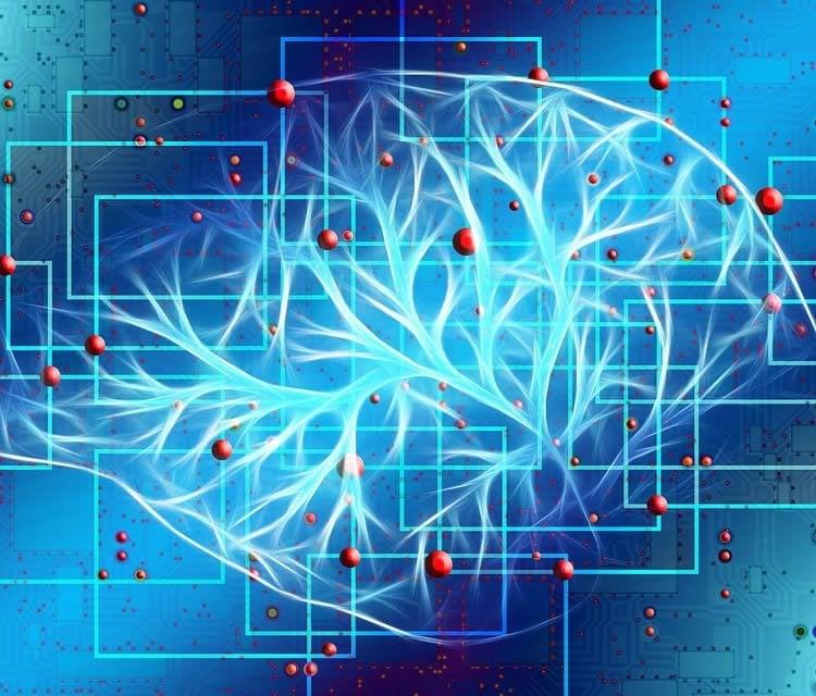 a digital brain